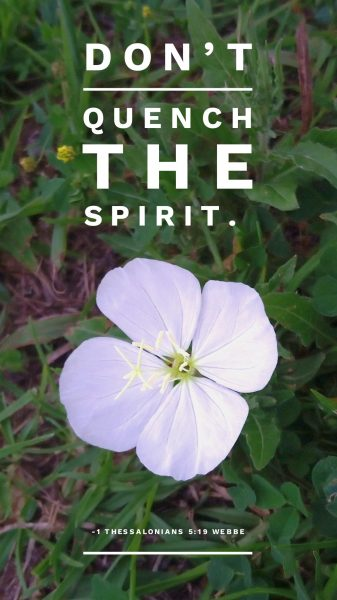 1 Thessalonians 5:19 (WEBBE): Don't quench the Spirit.